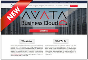 AVATA - new website
