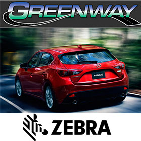 Zebra - Greenway