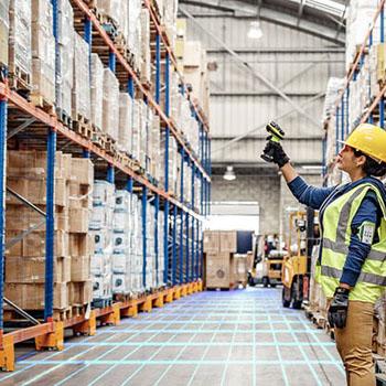 Zebra - Warehouse Vision Study