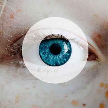 Irisbond - eye-tracking